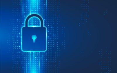 7 pasos para evitar las estafas digitales en Internet